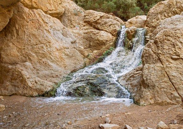 מפל בעין בוקק. מים במדבר