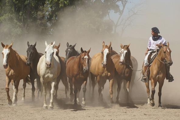 במטבח המקומי משתקפת, בין השאר, מסורת הגאוצ'וס, המובילים עם סוסיהם את עדרי הבקר
