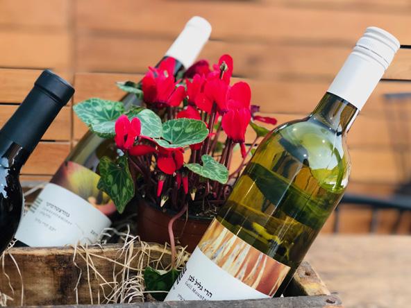 בקבוקי יין של יקב הרי הגליל. יין איכותי לצד נופים גליליים, היש טוב מזה?