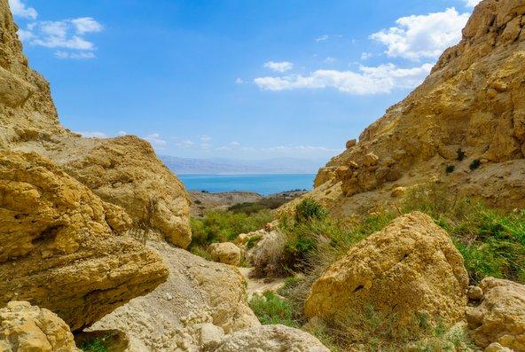 תצפית על ים המלח מנחל דוד | צילום: שאטרסטוק