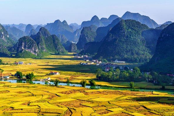 שדות האורז והצוקים המזדקרים מהם באזור נין בין