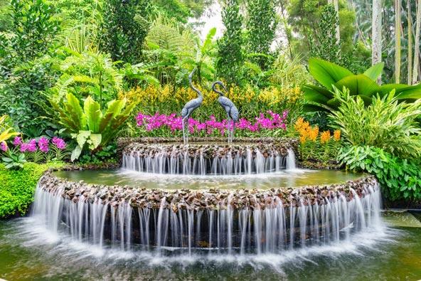 פינת חמד בגן הסחלבים הנמצא בגנים הבוטניים של סינגפור