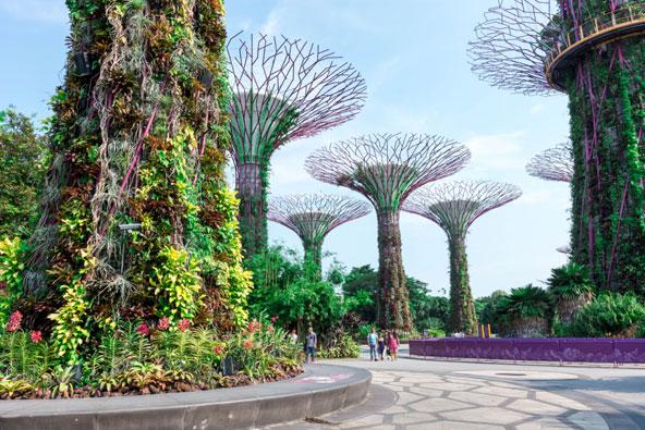 שילוב מוצלח בין צמחייה אמיתית לעצים מלאכותיים מרהיבים ב-Gardens by the Bay