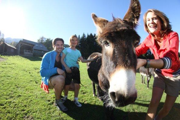מפגש עם חיות בהר הפרא מאוטרן | צילום: Foto Kaserer
