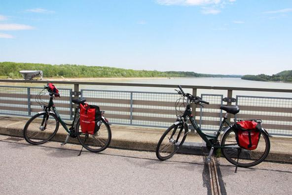 כך נראים אופני הדנובה | צילום: יעקב שקולניק