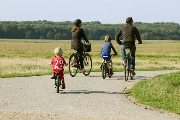 מומלץ לטייל באופניים במרחבים הפסטורליים הסמוכים לקופנהגן