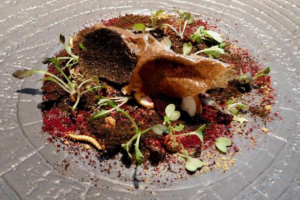 """""""קרקעית היער"""", מנה במסעדת הברווז השמן"""