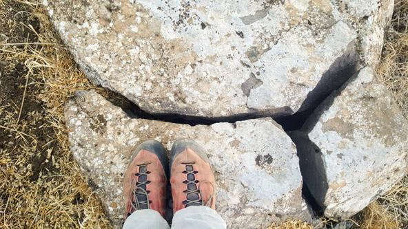 אבן בזלת בגולן | צילום: רתם אלינסון