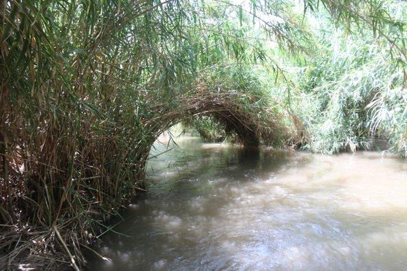 פינת חמד שלווה במים. גם ביום עמוס אפשר למצוא בפארק הירדן הרבה פינות סודיות