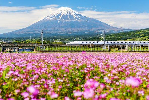 טיול ליפן: ערים, מקדשים וטבע