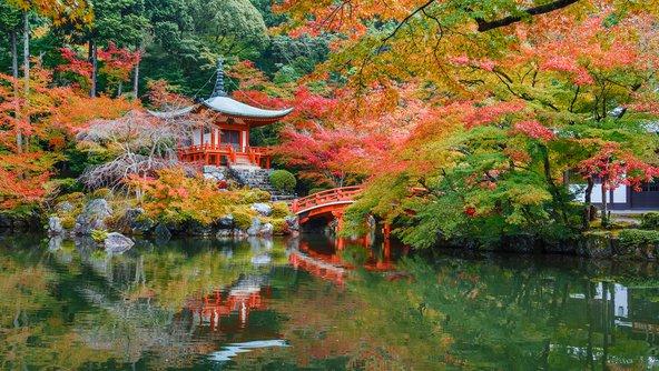 גן יפני בקיוטו, בסתיו | צילום: cowardlion / Shutterstock.com