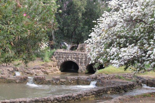 שרידי טחנת הקמח והבריכות בפארק הירדן