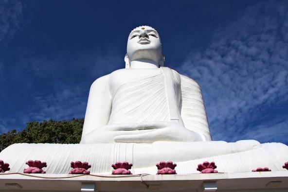בודהה לבנה ענקית במעלה קנדי
