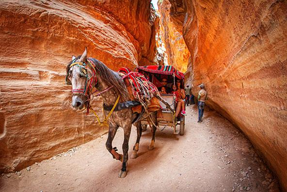 מי שמתקשה ללכת ברגל ישמח להיעזר בכרכרות הרתומות לסוסים המחכות לתיירים בכניסה