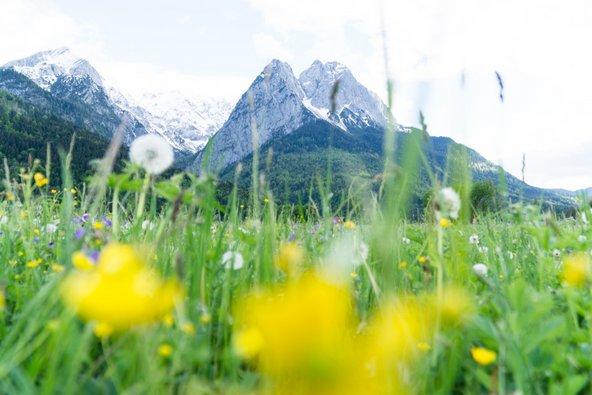 צוגשפיצה, הפסגה הגבוהה בגרמניה