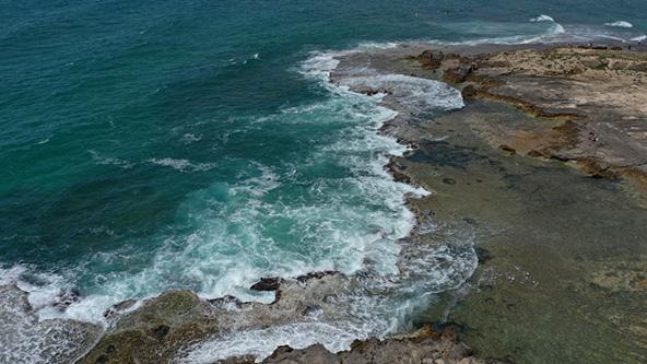 חוף דור הבונים. חופים המוכרזים כשמורות טבע לרוב נקיים יותר | צילום: שאטרסטוק