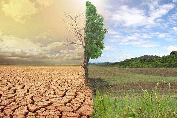 שינויי אקלים, ישראל ופעילות לשינוי