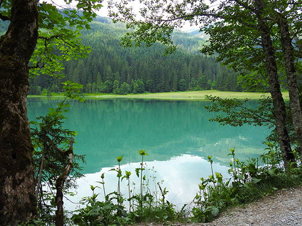 אגם Jagersee. הרבה קריאות וואו נשמעות לאורך הדרך | צילומים בכתבה: עמי בן בסט