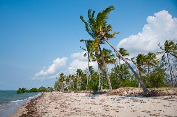 שמורת סאדני מאפשרת לשלב טיול ספארי ושהות בחופים קסומים