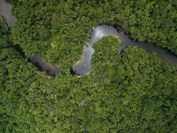 צילום אווירי של אגן האמזונס בברזיל לפני השריפות. המגוון הביולוגי הגדול ביותר בעולם