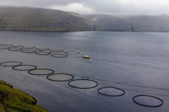 דיג הוא מקור הפרנסה העיקרי באיים | צילום: אורית גוטרבוים-פרטוק