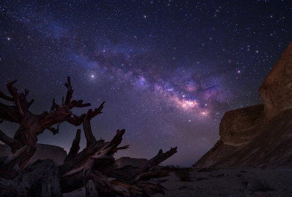 בלילות הקיץ אפשר ליהנות בנגב מתצפית על שמים זרועי כוכבים