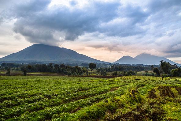 לטייל ברואנדה – היעד החם הבא