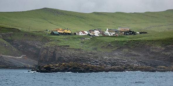 כפר קטן משקיף אל הים ומתחתיו מושבת שחפים על קו המים | צילום: רפי קורן