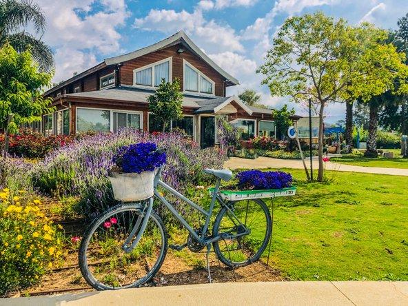 הוילג' מלון מטיילים על הירדן. מדשאות, פרחים ושלווה מושלמת, כמה דקות הליכה מהירדן