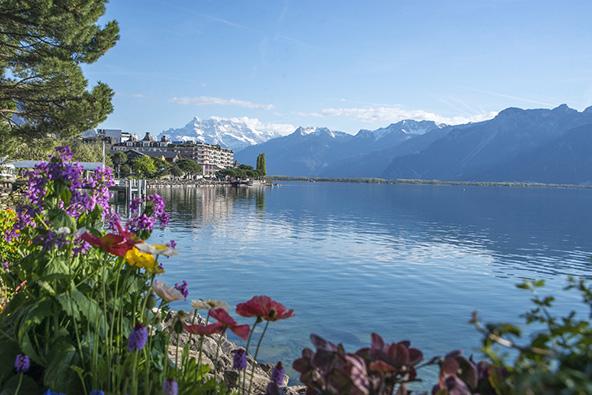 מסוג הנופים ששווייץ התברכה בהם בשפע: האלפים, אגם ז'נבה והעיירה מונטרה