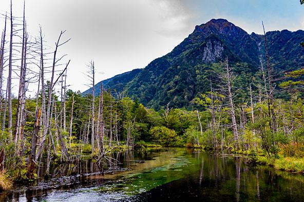 שמורת קאמיקוצ'י. הטבע במלוא תפארתו