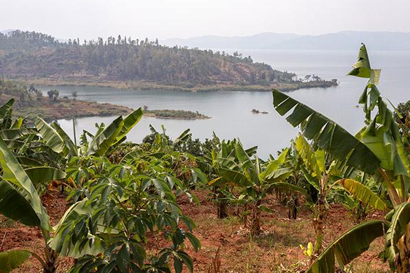 לרואנדה אין מוצא לים, אבל יש לה אגמים רבים | צילומים בכתבה: אמיר ירחי