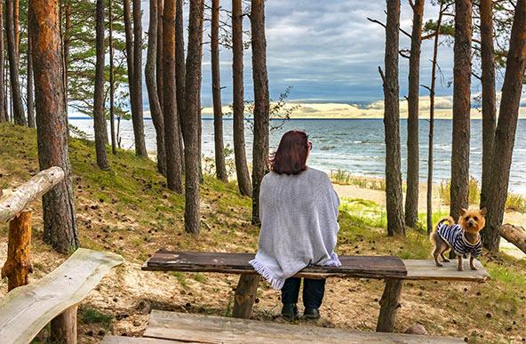 רגע של מנוחה והרהורים בפארק הלאומי קמרי בלטביה