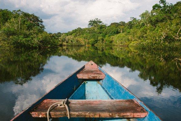 סירה בנהר מוקף בצמחייה העבותה של יער האמזונס בברזיל