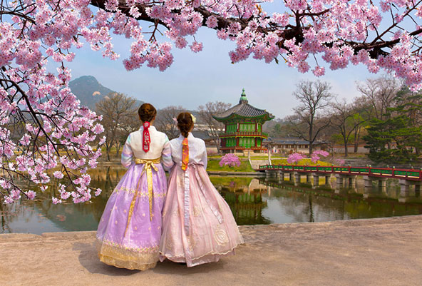 דרום קוריאה - המדריך המלא לטיול לדרום קוריאה
