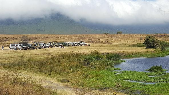 רכבי ספארי לצד אגם במכתש נגורונגורו. המכתש יוצר מתחם מוגדר שבתוכו חיים כ-25 אלף בעלי חיים גדולים