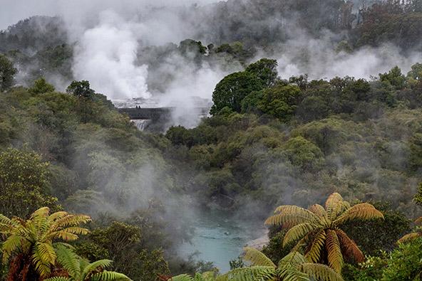 TE PUIA, האי הצפוני, ניו זילנד