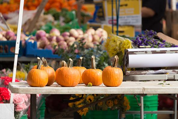באוקטובר צצים בדוכני השוק בבוסטון, לצד הירקות האחרים, דלועים בצבע כתום עז