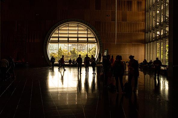מוזיאון טה פאפא בוולינגטון