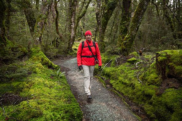 בלוג לייב מניו זילנד: היחס לטבע ולסביבה
