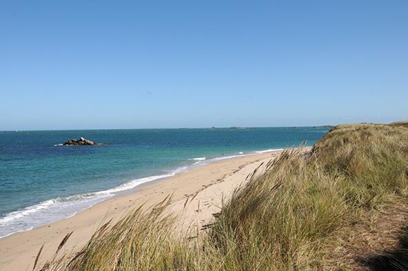 Shell Beach, חוף חולי באי הרם. המבקרים מגיעים לכאן בגלל החופים ונשארים בזכות השלווה