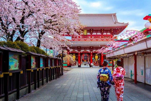 מקדש סנסו גי' בטוקיו. בטוקיו יש מקדשים רבי שמשמשים מפלט מהמולת העיר