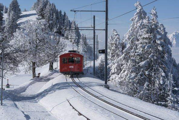 רכבת גלגלי השיניים המטפסת להר ריגי בשלג | צילום: (c) RIGI BAHNEN AG