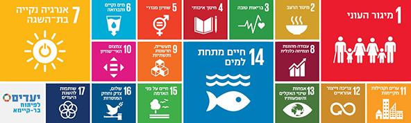 """17 יעדי הקיימות הגלובליים שנקבעו על ידי האו""""ם"""