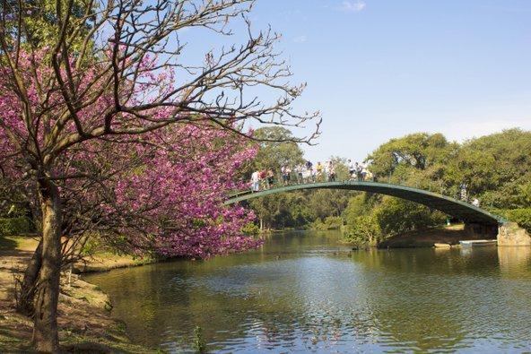 פארק איביראפוארה, אחד הפארקים הגדולים בדרום אמריקה