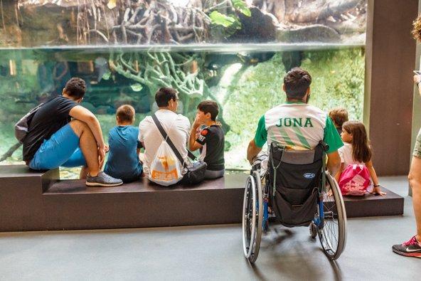 מוזיאון המדע בברצלונה, אחת מהערים הידידותיות בעולם לנכים
