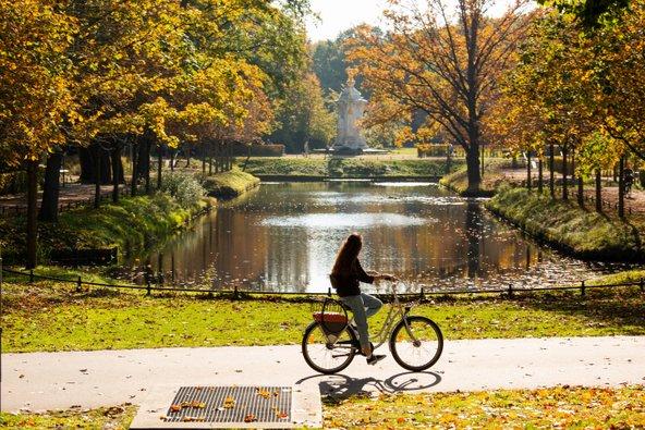 אופניים בטירגרטן. ברלין היא גן עדן לאוהבי אופניים