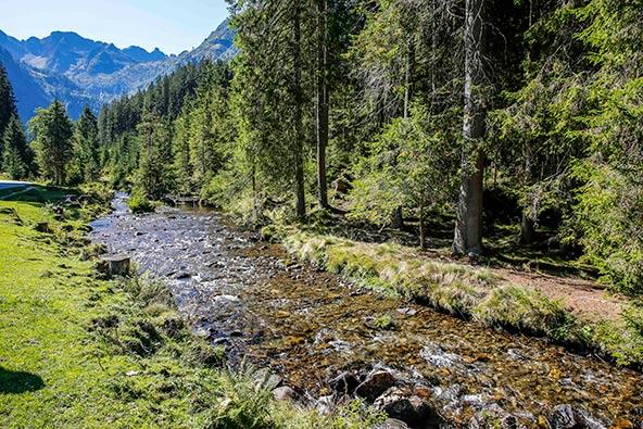 גן עדן לאוהבי טבע: בונדזי, אחד מאזורי הטיול היפים של שלדמינג-דאכשטיין