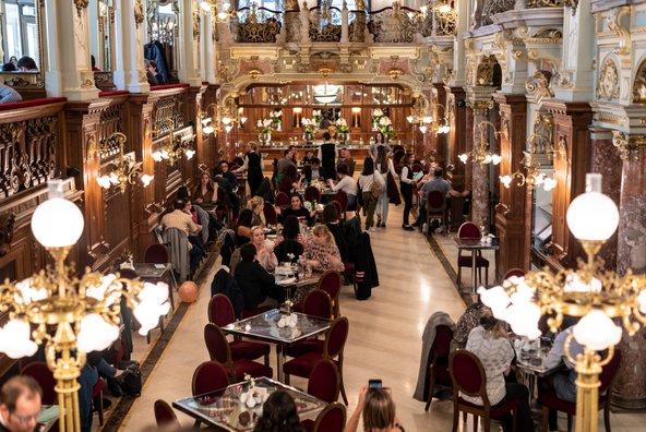בית הקפה המיתולוגי קפה ניו יורק בבודפשט | צילום: Juliano Galvao Gomes / Shutterstock.com