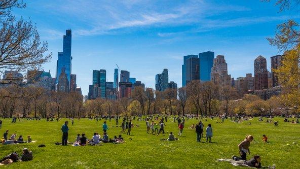 הסנטרל פארק בניו יורק, מקום נהדר לתפוס בו אתנחתא מהמולת העיר